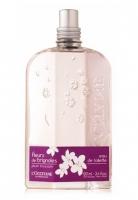 L'Occitane Fleurs de Brignoles (Plum Blossom)