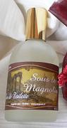 Auguste Sous le Magnolia