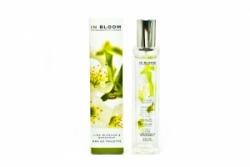 Marks & Spencer Lime Blossom and Bergamot