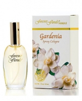forever florals Hawaii Gardenia