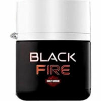 Harley Davidson Black Fire