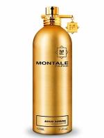 Montale Paris Aoud Ambre